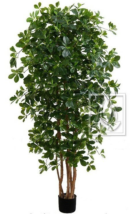 Umělá rostlina orientální Fikus 100 cm