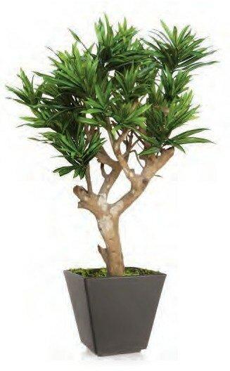 Umelý strom Dracaena Reflexa Robustina (90cm)