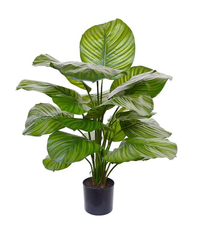 Umelá rastlina Kalatea Fasciata 70 cm