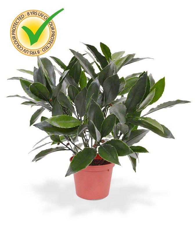 Laurierova umělá rostlina 35 cm