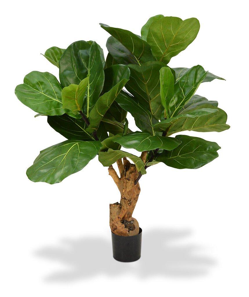 Umělý strom Fíkovník lýrovitolistý 80 cm