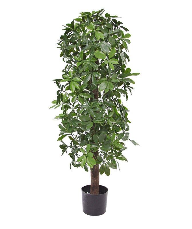 Umělý strom Schefflera 120 cm