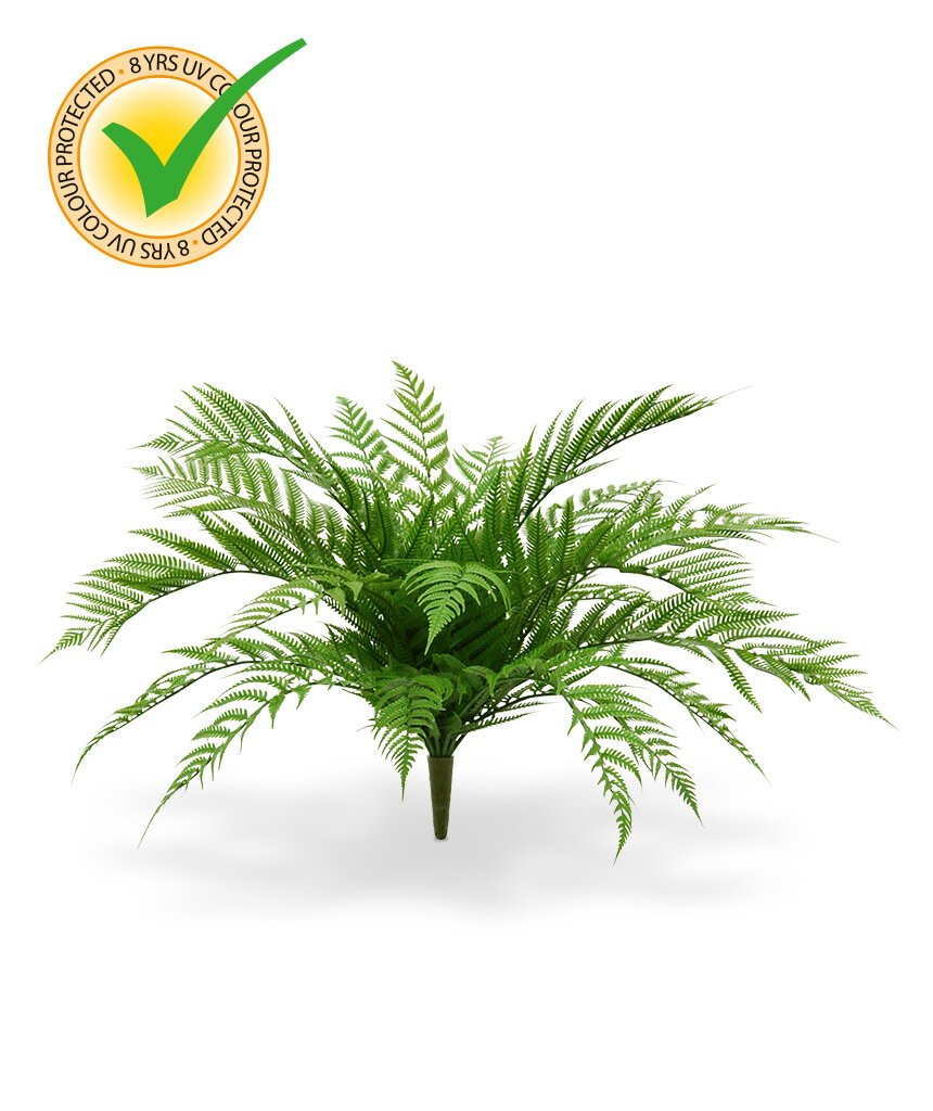 Umělá rostlina Alsophilla 75 cm