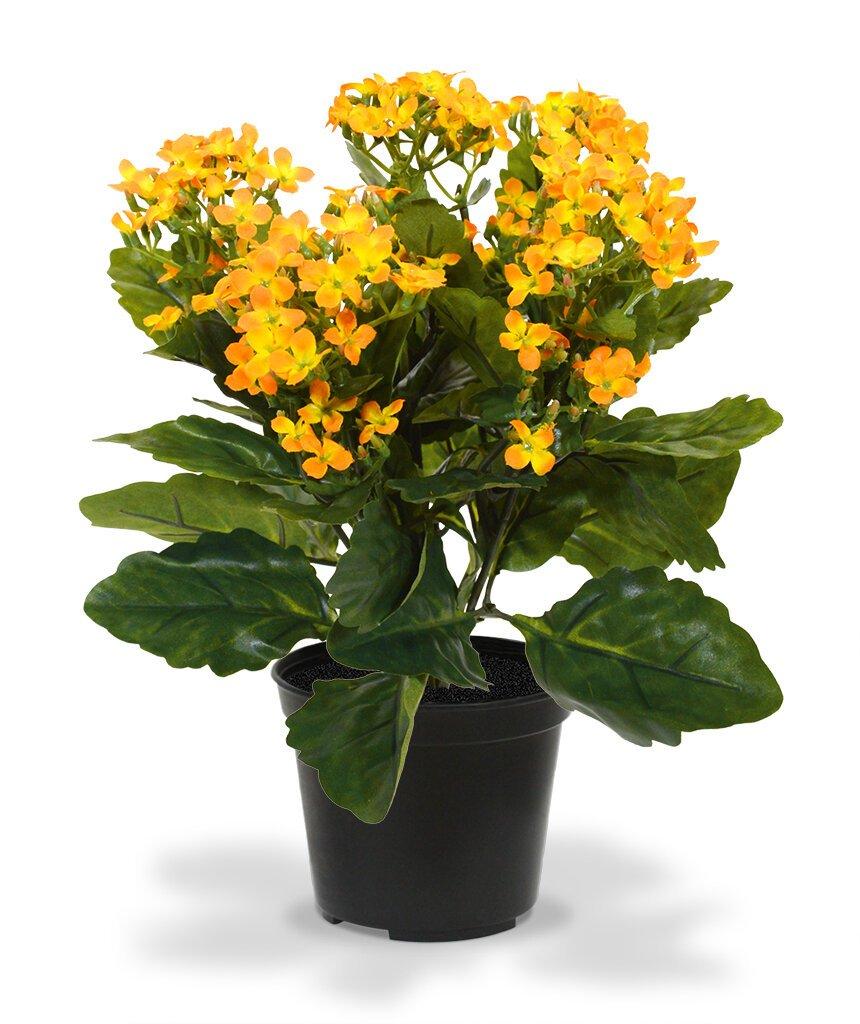 Umělá rostlina Kalanchoe 30 cm oranžová