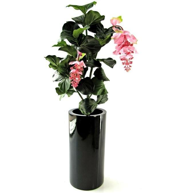 Umelá rastlina Medinella Deluxe 90 cm