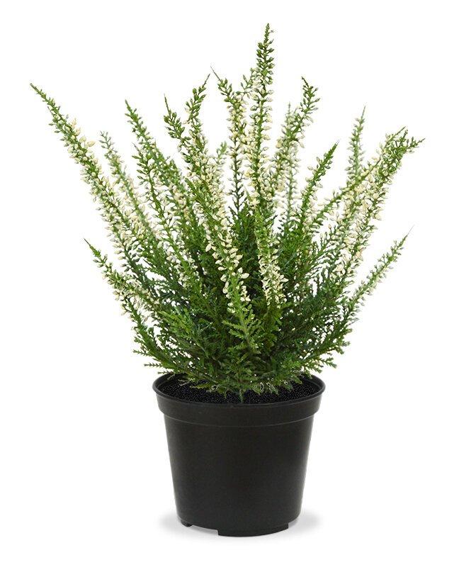 Umelá krémová rastlina Vres 25 cm