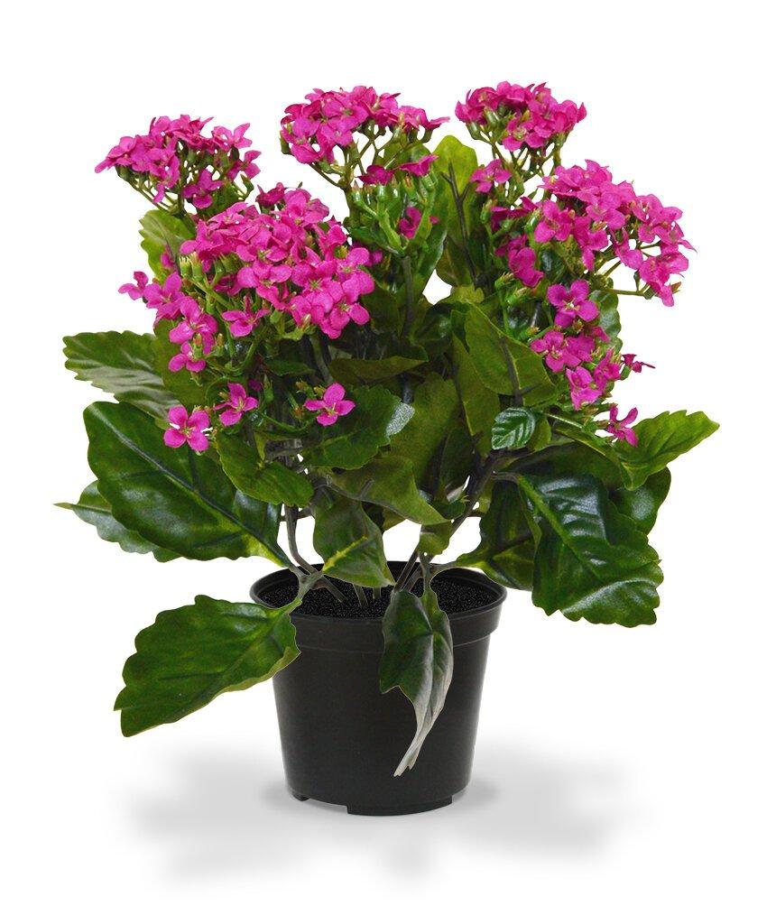 Umelá rastlina Kalanchoe 30 cm v kvetináči - fialová