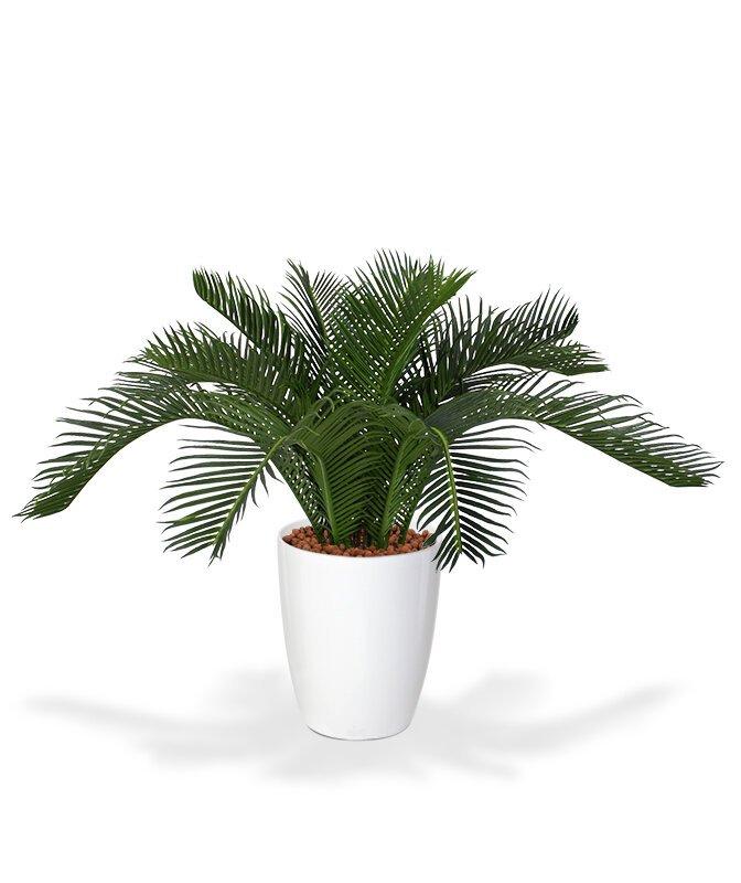 Umelá palma Baby Cycas 50 cm