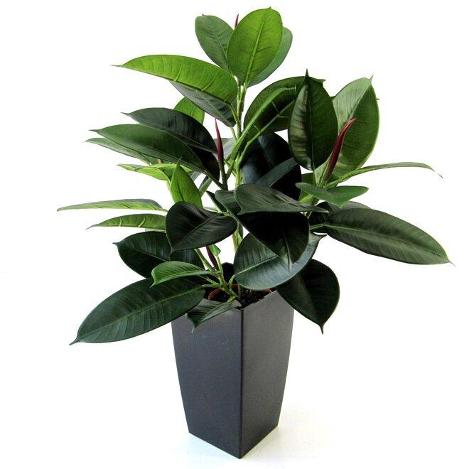 Umělý květ Philodendron 50 cm