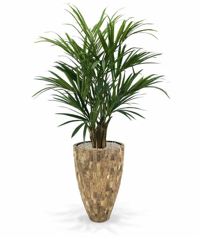 Umelá palma Kentia XL Deluxe 140 cm