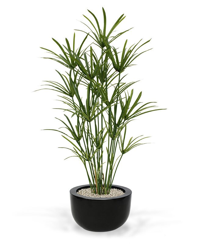 Krásna umelá rastlina Papyrus Deluxe 135 cm