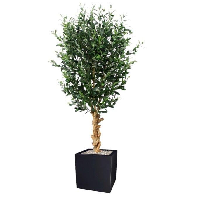 Olivový strom Deluxe 155 cm