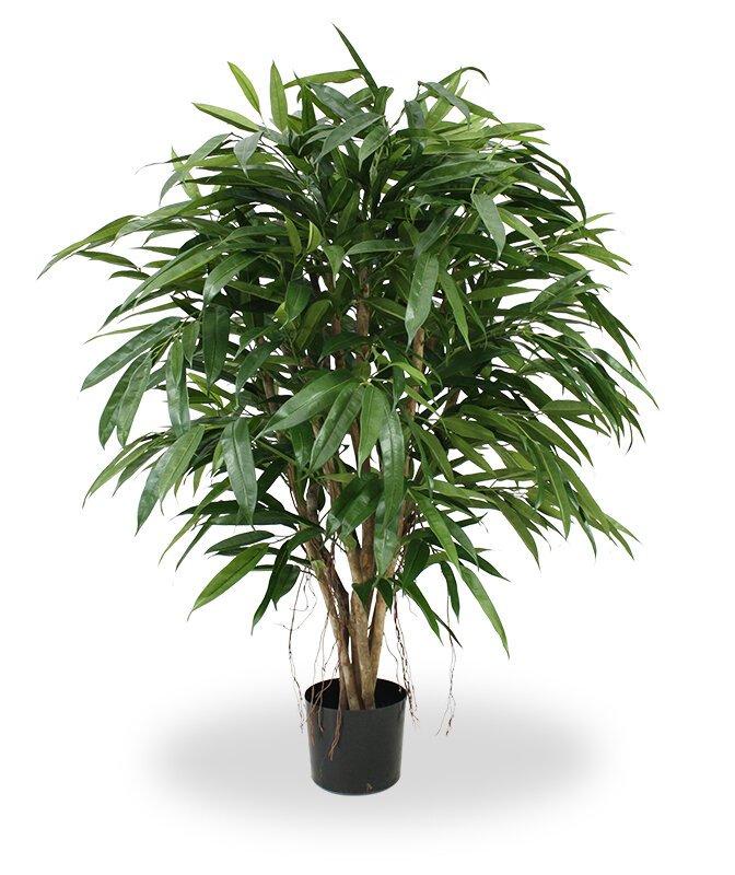 Umelý strom Longifolia Deluxe 120 cm