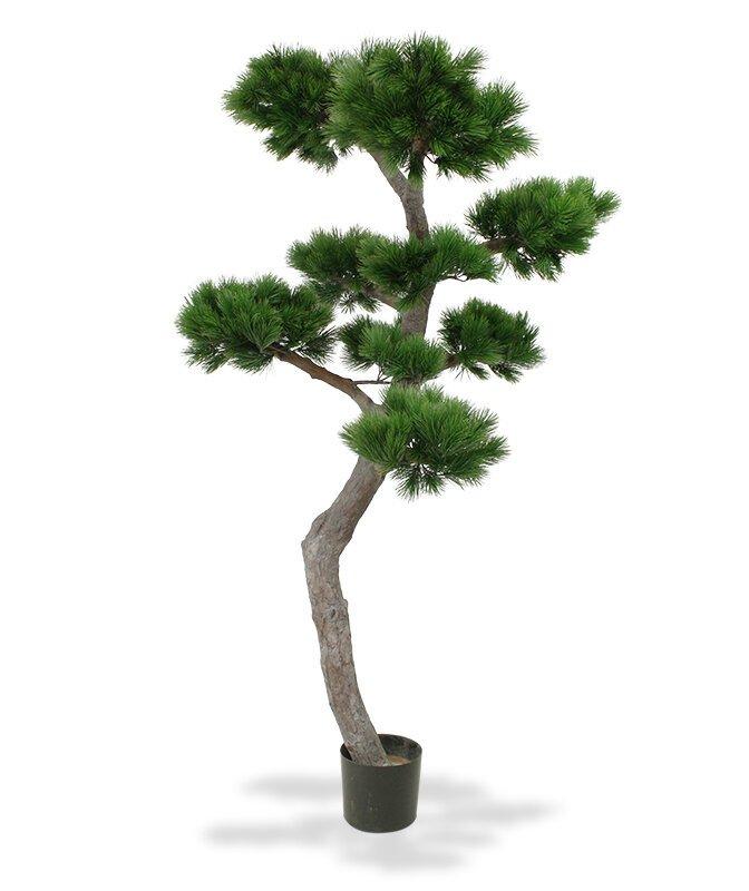 Umělý strom Pinus Bonsai 200 cm