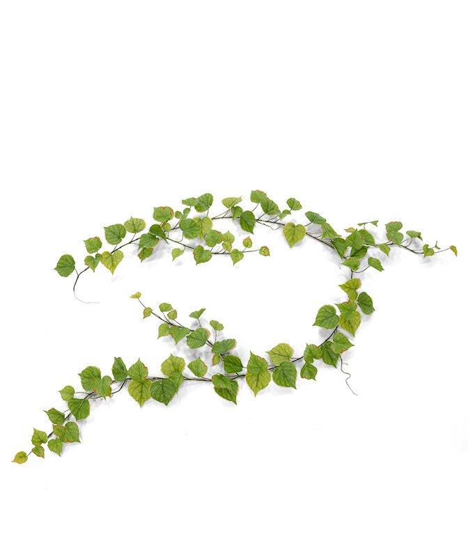 Umělé zelená úponky Topol 180 cm
