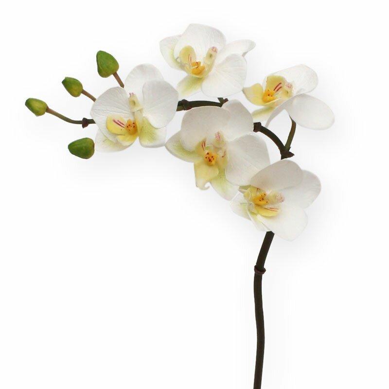Umelá biela vetva Orchidea Phalaenopsis 50 cm