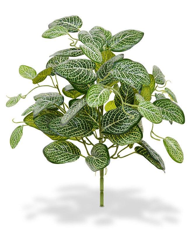 Umělá rostlina Fittonia 40 cm