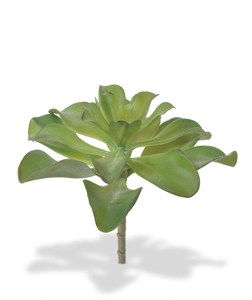 Umelá rastlina Echeveria 20 cm
