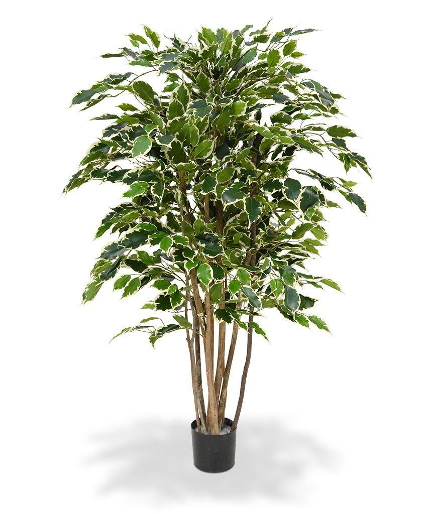 Umelý Ficus Exotica Deluxe 125 cm