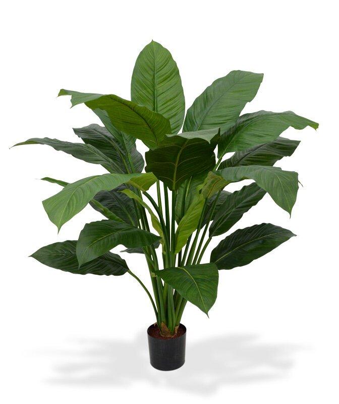 Umělá rostlina Spathiphyllum King 100 cm