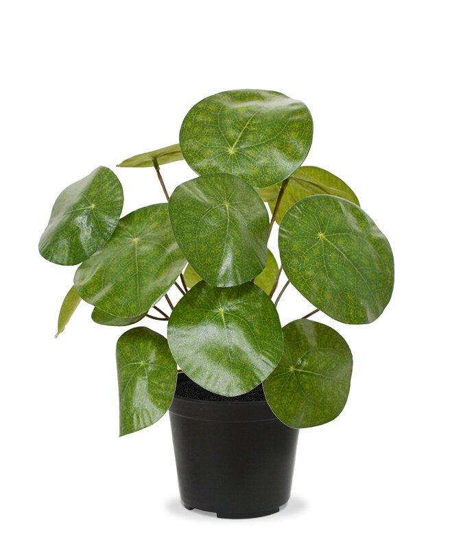 Umelá čínska rastlina 20 cm