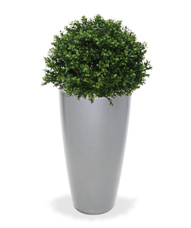 Umělý strom Buxus Deluxe 40 cm