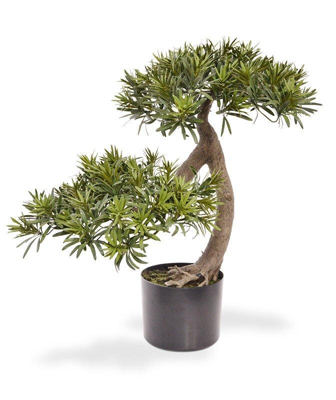 Umelý Bonsai Podocarpus  55 cm