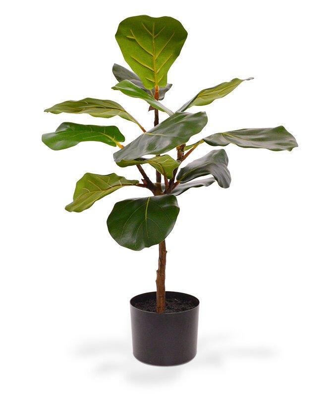 Lyrata umělá rostlina 60 cm v květináči