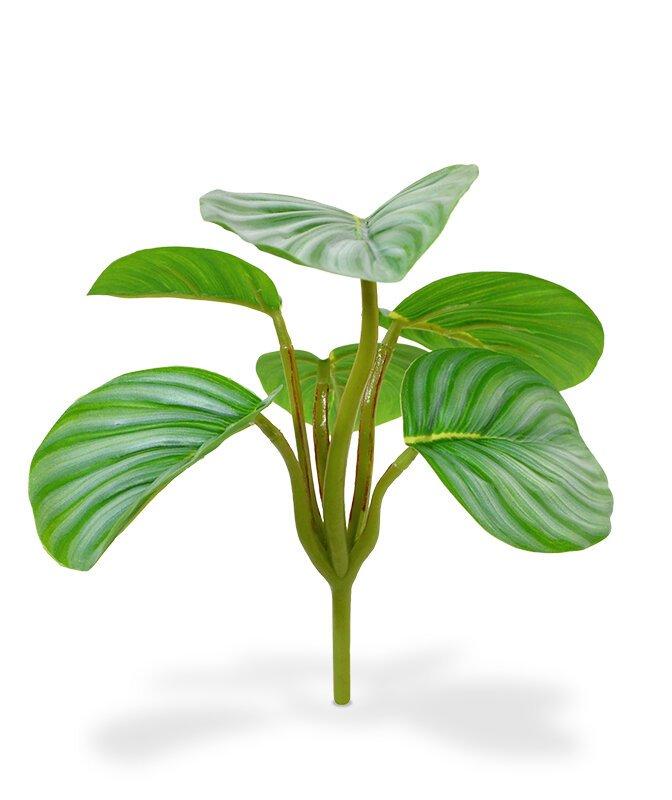 Umělá Mini Orbifolia 20 cm