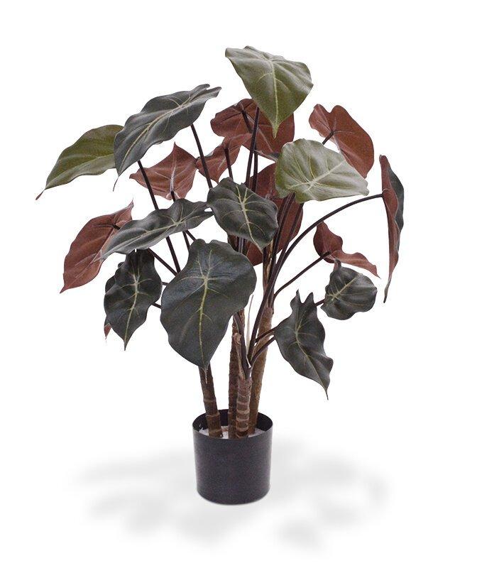 Umělá rostlina Syngonium 60 cm