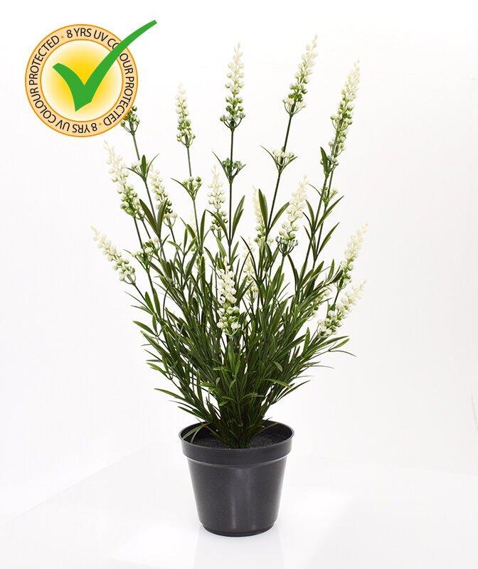 Umělá rostlina Levandule v květináči 50 cm - bílá