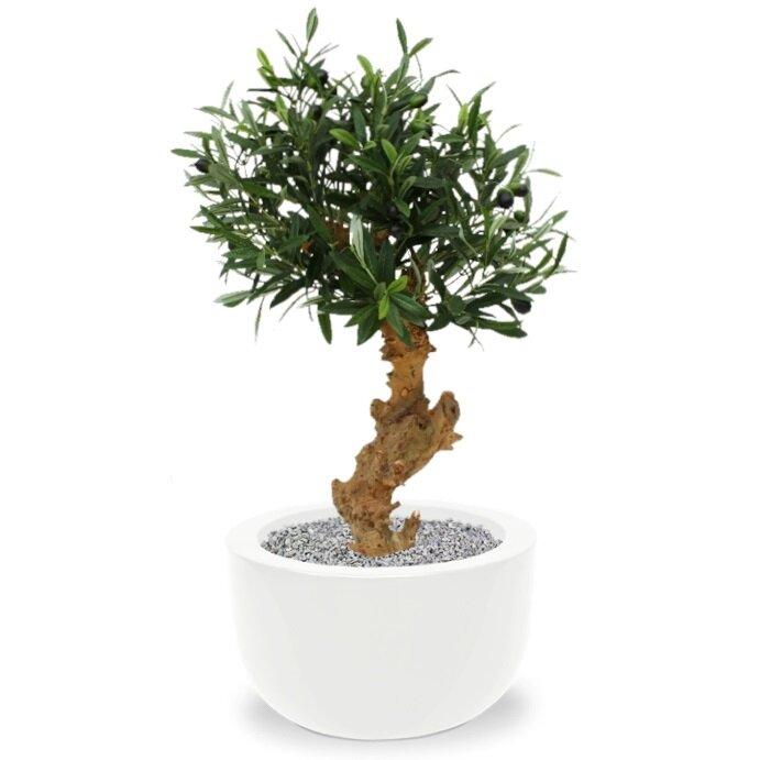 Umelý Bonsai Olivovník 60 cm