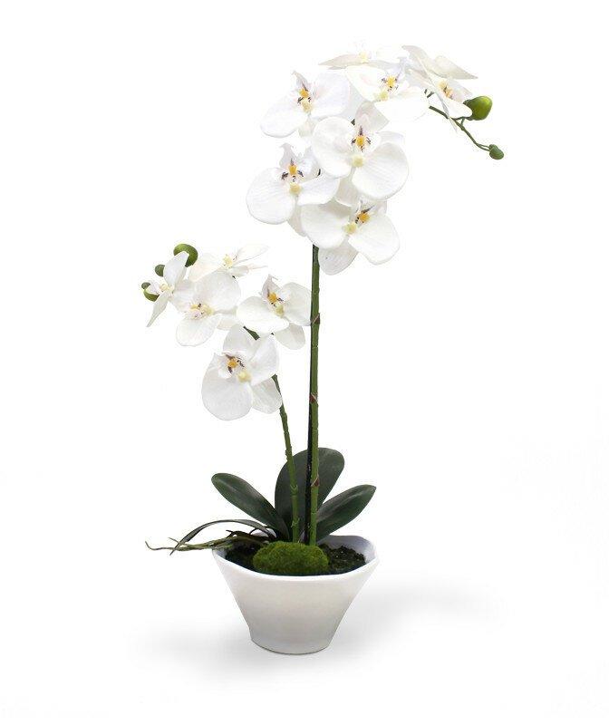 Umělá Orchidea Phalaenopsis 50 cm v misce