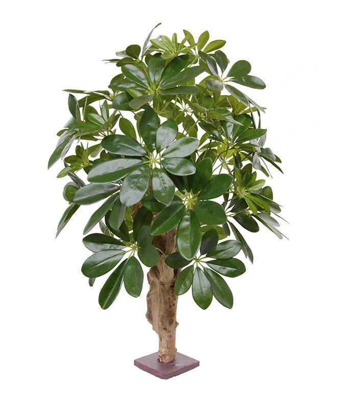 Umelá rastlina Šeflera 65 cm