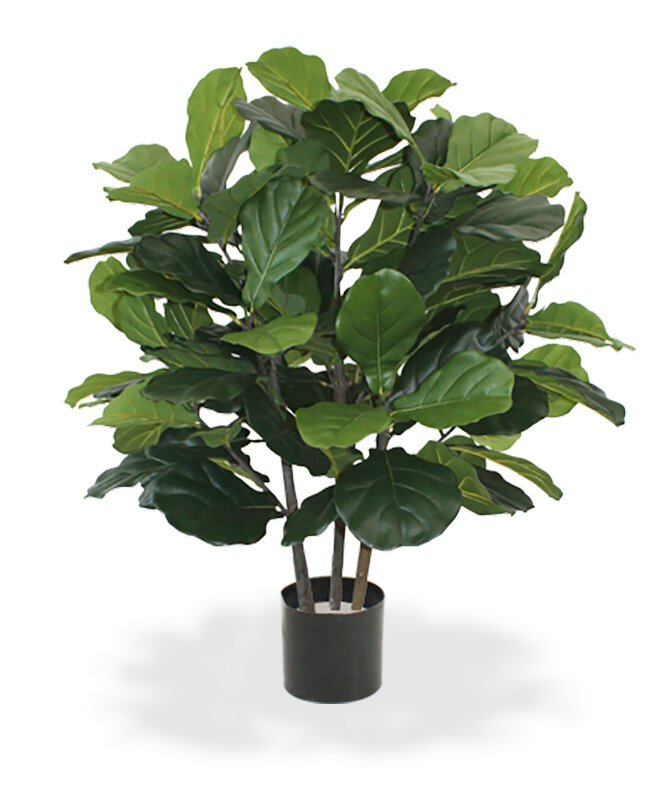 Umelá rastlina Lyrata 95 cm