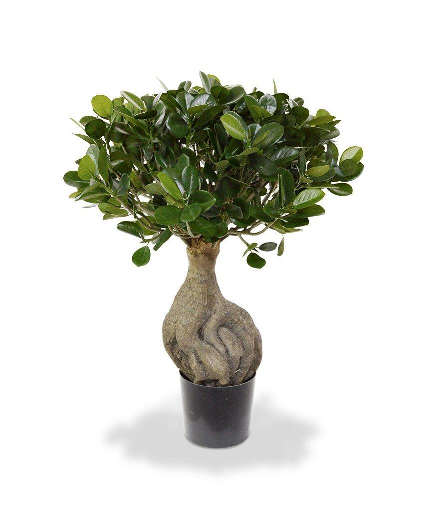 Umělá bonsaj Panda 55 cm