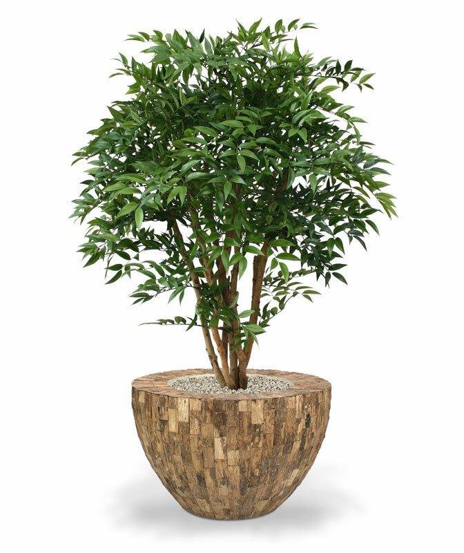 Umelý strom Ruscus Deluxe 110 cm