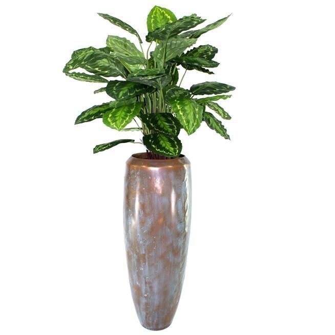 Umělá rostlina Calathea 80cm