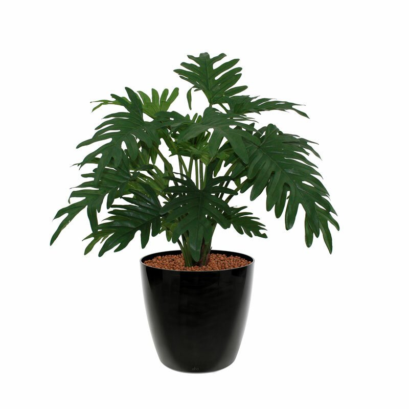 Umelá rastlina Filodendron Xanadu 50 cm