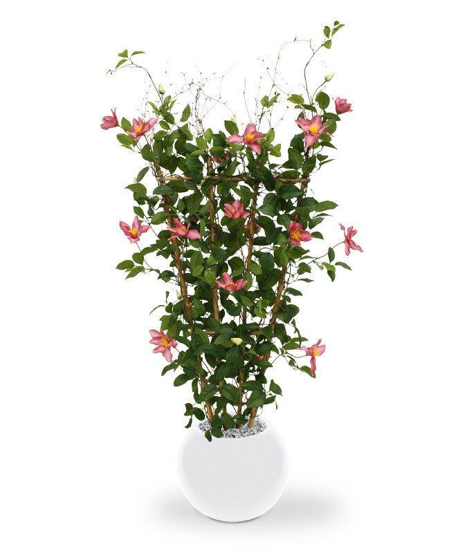Umelá rastlina Clematis 125 cm - ružová