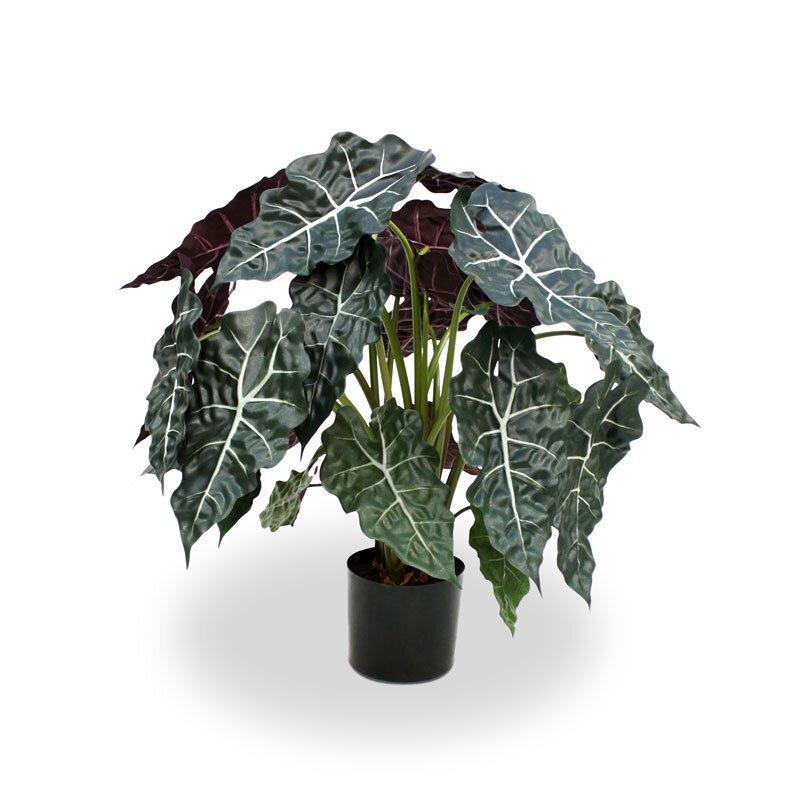 Umělá rostlina Alokázie 75 cm - červená