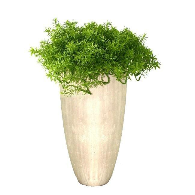 Umělá rostlina Senecio v květináči - 30 cm