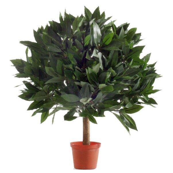 Umelá rastlina Laurel 35 cm