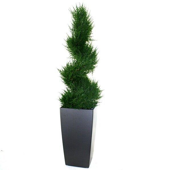 Umělý spirálový strom Cypress DeLuxe 100 cm