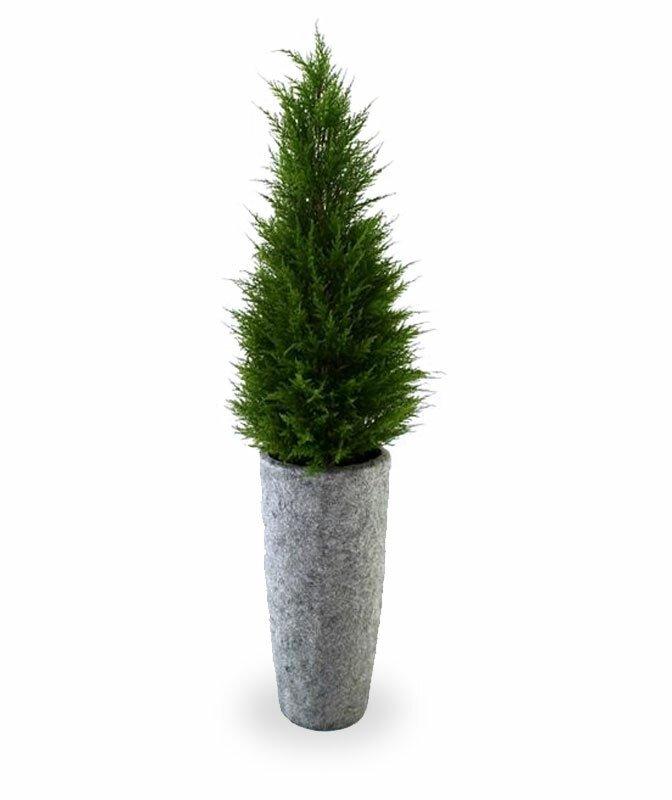 Umelý strom Cyprus Deluxe 100 cm