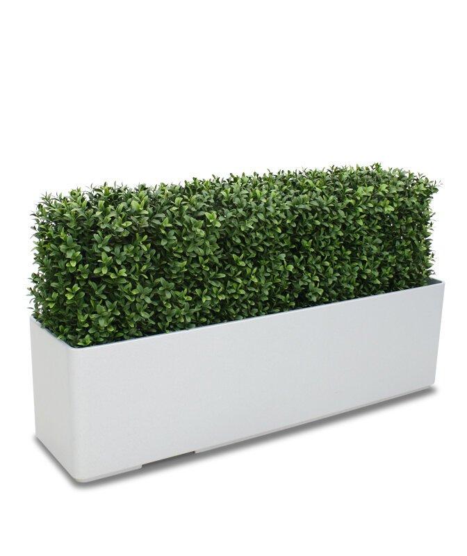 Krásný umělý buxusový živý plot Deluxe 80x27 cm