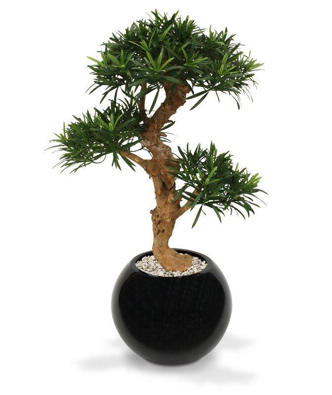 Umelý Podocarpus Bonsai 65 cm