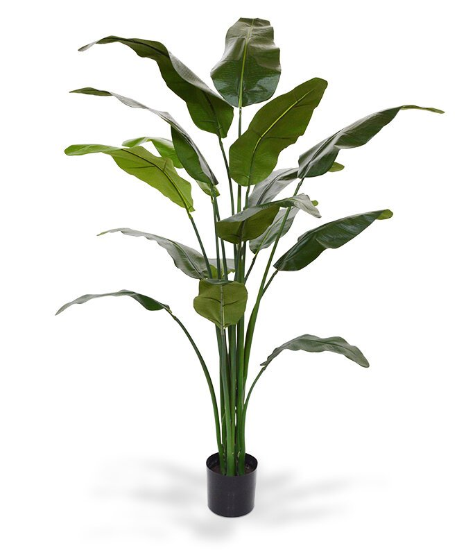 Umelá rastlina Ravenala madagaskarská 165 cm