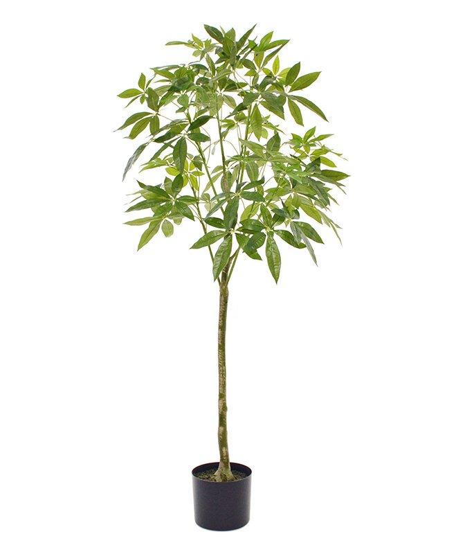 Luxusný umelý strom Pachira 150 cm