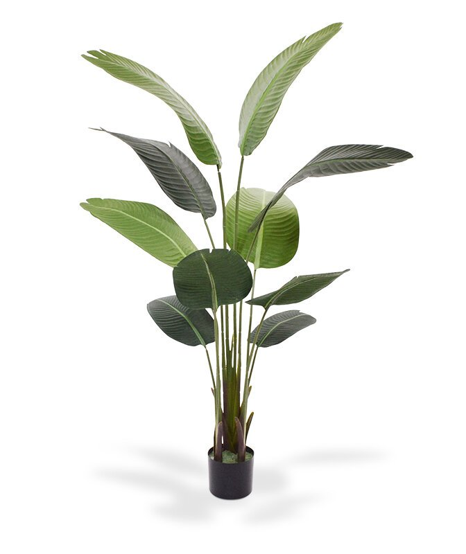 Umělá rostlina Strelície 160 cm